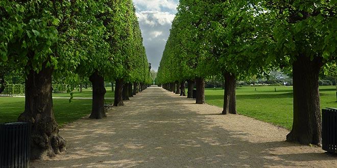 Kongens have i København