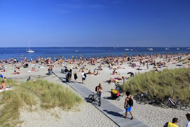 Fotograf: Adrian Saly, Amager Strandpark I/S