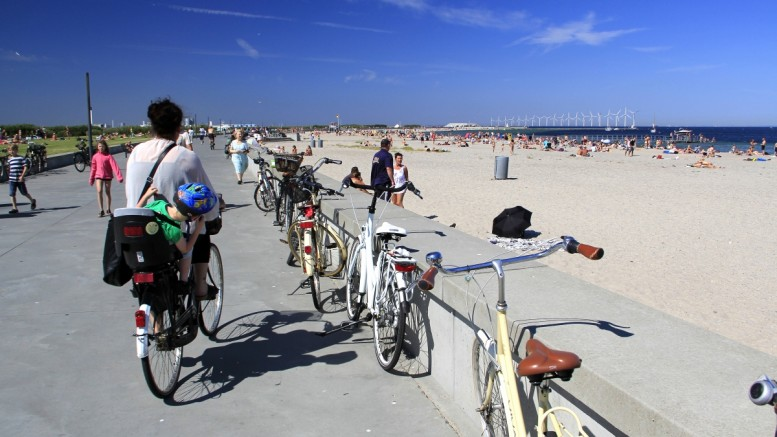 Image result for amager strandpark