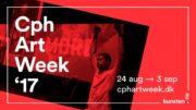 Cph Art Week 17