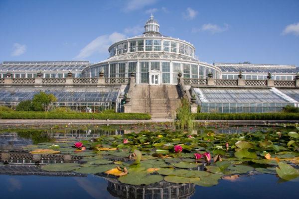 Botanisk Have - Palmehuset